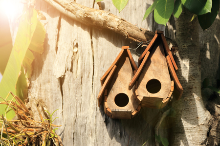 Wooden birdhouse in garden with warm light flare.