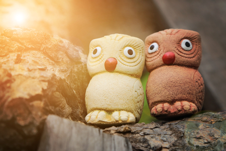 Couple birds, two wise owls statues in garden with warm light flare. Stock Photo - 80268813