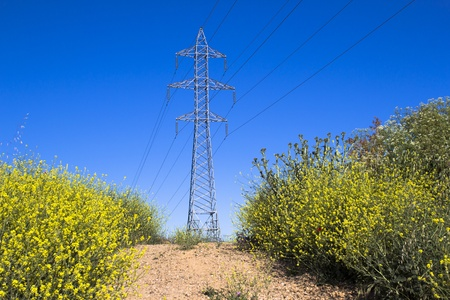 Electricity pylon in a spring time Stock Photo