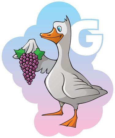 Series of Children alphabet: letter G, goose and grapes Illustration