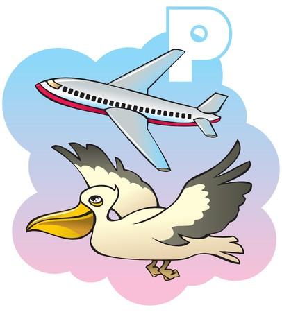 Series of Children alphabet: letter P, pelican and plane, cartoon. Vector