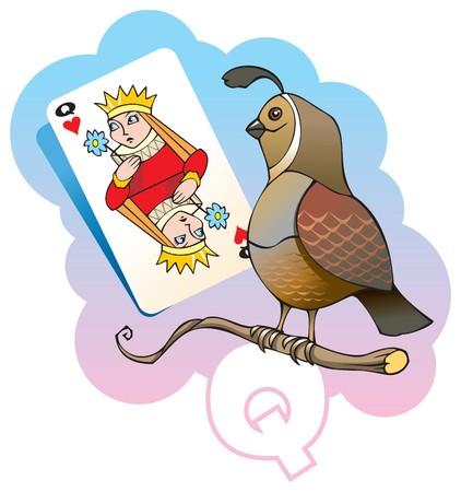Series of Children alphabet: letter Q, quail and queen, cartoon illustration Imagens - 7237272