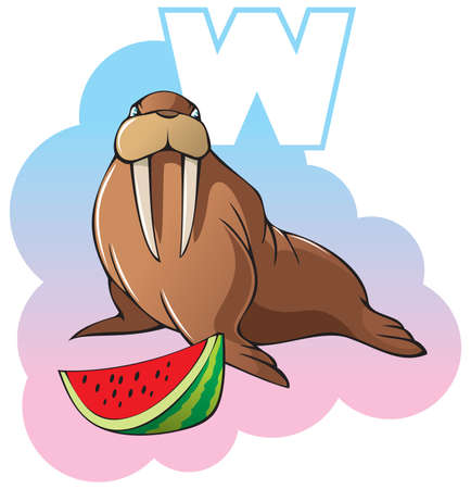tusk: Series of Children alphabet: letter W, walrus and watermelon, cartoon illustration