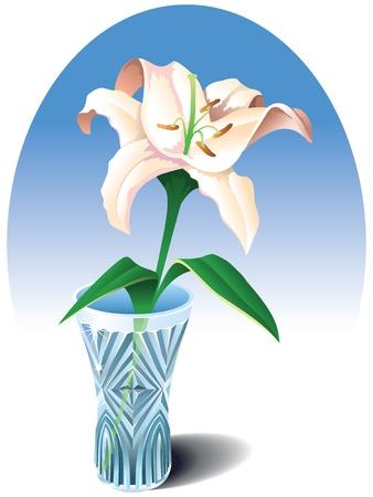 abloom: Lirio cremoso de licitaci�n en el jarr�n de cristal, ilustraci�n vectorial
