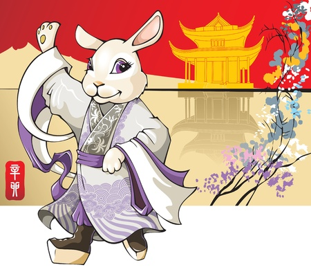 White rabbit, the symbol of coming 2011 year according Chinese lunar calendar, wearing traditional Beijing opera costume, vector illustration Illustration