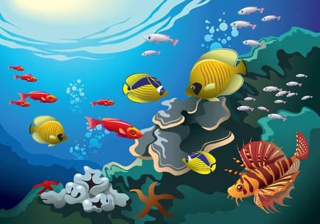 Mundo submarino: los arrecifes de coral bajo el mar, muchos peces de colores brillantes, ilustración de vectores