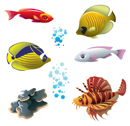 seawater: Set of tropical bright fishes and polyp, vector illustration