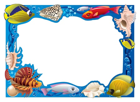 seawater: Decorative frame for photo with tropical bright fishes and seashells, illustration