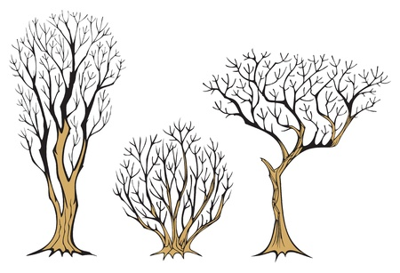 Set of three withered trees, with plenty branches, vector illustration