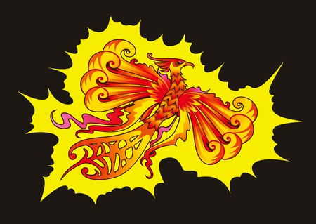 mythical phoenix bird: Mythical Phoenix or flaming bird, illustration Illustration