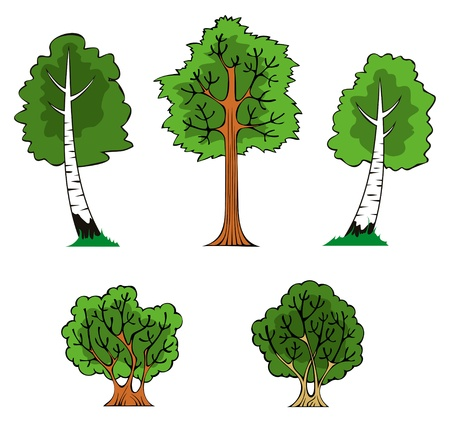 Trees and bushes in the forest Vector