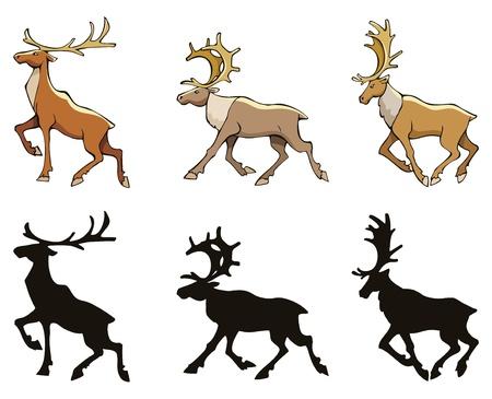 reindeer silhouette: Three reindeer with silhouettes, vector illustration Illustration