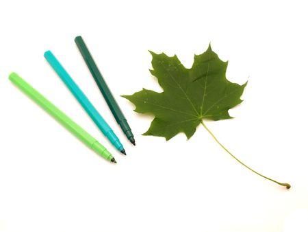 hued: Color felt-tip pens and leave on a white background
