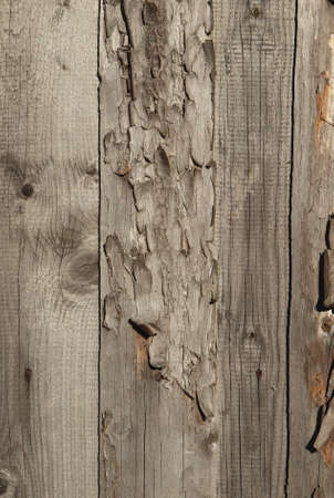 Pattern of old weathered timbered wall Stock Photo - 7728626