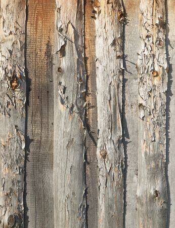 Pattern of old weathered timbered wall     photo