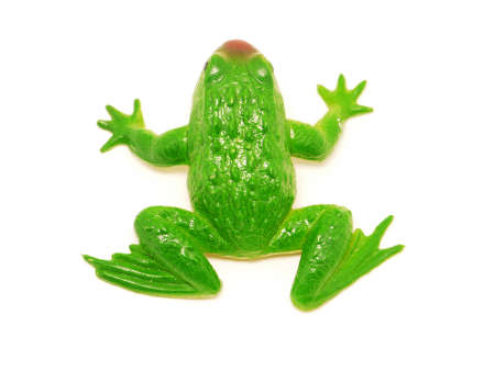 statuary garden: Frog on a white background Stock Photo