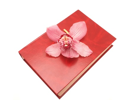 herbal knowledge: Orchid and the book Stock Photo