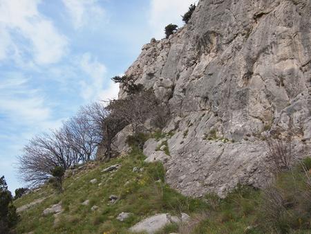 rocky mountain juniper: Rock and sky Stock Photo