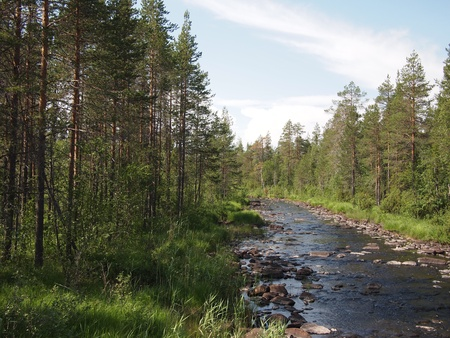 Coast of the river in the spring. Karelia, Russia