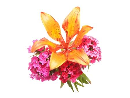 Blumen Auf Einem Weißen Hintergrund Lizenzfreie Fotos, Bilder Und ...