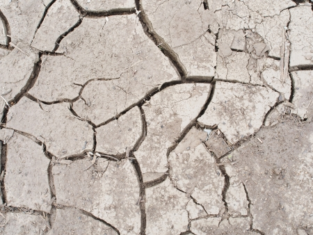 dry land: Dry land in the cracks. background