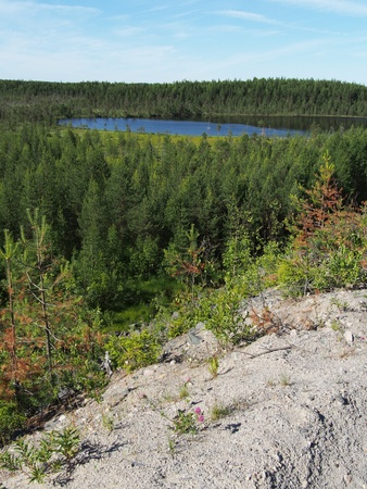 ladoga: Lake in the summer Stock Photo