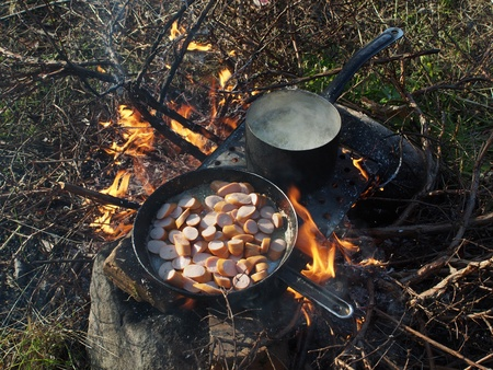 Frying pan and a pot on the fire photo