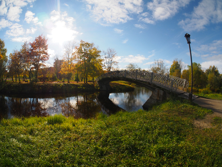 bridge in the autumn park  photo