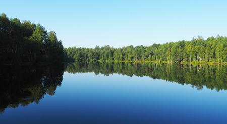 bogs: forest lake. karelia