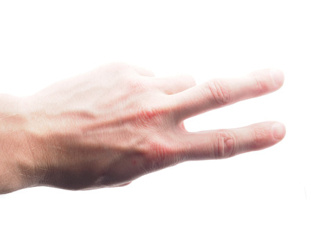 hand on a white background photo
