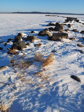 grass verge: erba secca in mezzo alla neve