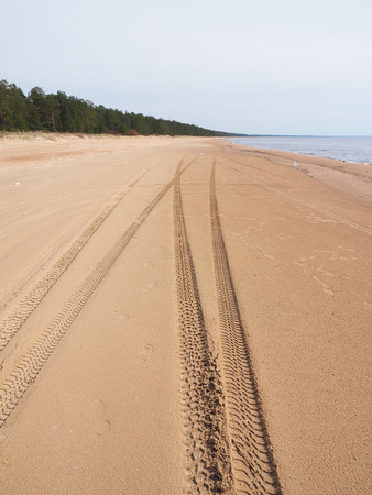 uniformity: tire tracks on the sandy shore of the lake Stock Photo