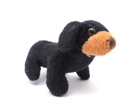 soft toy dog on a white background