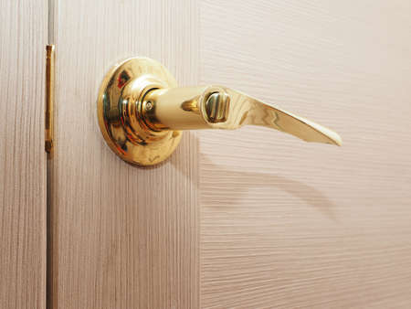 lath in modern: door knob