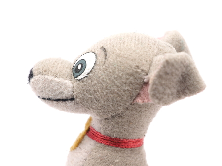 soft toy: soft toy dog on a white background