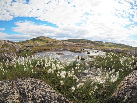 northern: Northern mountains - Hibiny. Panorama