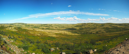 Tundra in the north of Russia. Panorama