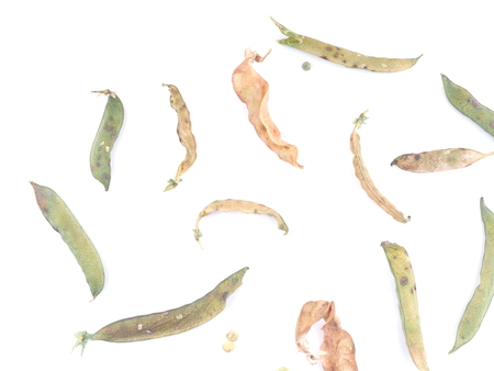 dry peas on a white background