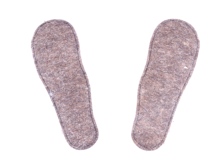 insole for shoes on a white background