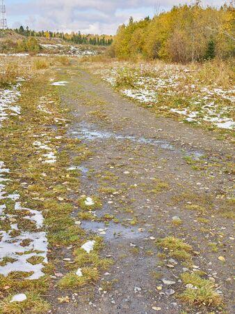 road in the field. autumn Stock fotó