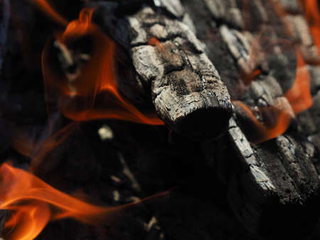 firewood burns in a fireplace background.