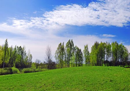 Beautiful spring landscape, panorama Stock Photo - 9997360