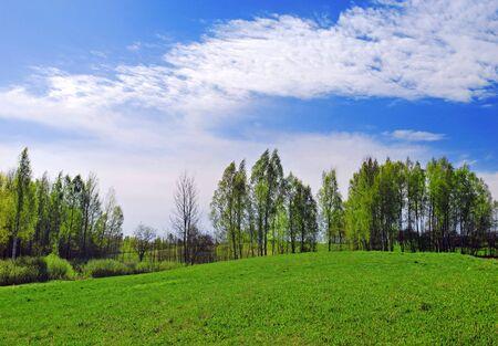 Beautiful spring landscape, panorama Stock Photo - 9997360