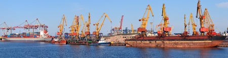 Industrial cargo port, vessel unloading, panorama photo