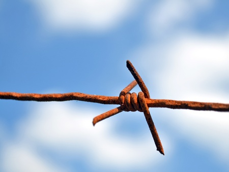 Barbed wire against blue sky Stock Photo - 13584949