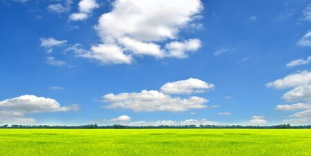 Green field and blue sky, landscape panorama Stock Photo - 13914124