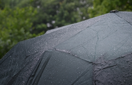 Rainy day, Rain and umbrella photo