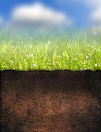 Underground soil Stock Photo