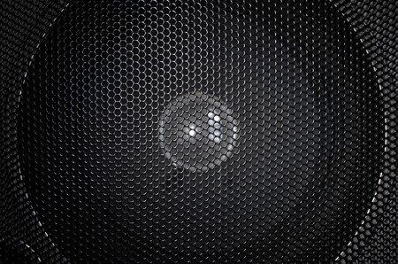speaker grill: Speaker grill