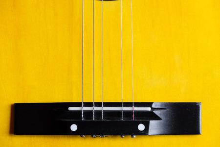 professional flute: Guitar strings